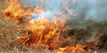 Минулої доби на Прикарпатті гасили понад 80 пожеж сухої трави