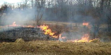 Хто і навіщо підпалює траву в Коломиї? ФОТО+ВІДЕО
