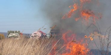 За минулу добу на Прикарпатті гасили понад 70 пожеж сухої трави