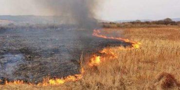 Рятувальники б'ють на сполох: за минулу добу на Прикарпатті сталося 29 загорань сухої трави