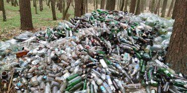 На Рівненщині 26-річний мешканець прибрав ліс від склотари і назбирав тонни пляшок. ФОТО