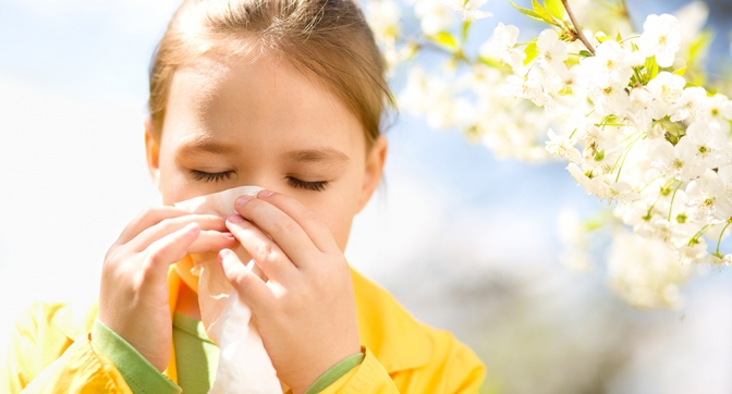 На Прикарпатті стартував сезон алергій (відеосюжет)