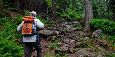 У Карпатах знайшлися туристи, які заблукали в горах