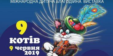 """У Коломиї відбудеться міжнародна дитяча благодійна виставка """"9 котів"""". АНОНС"""