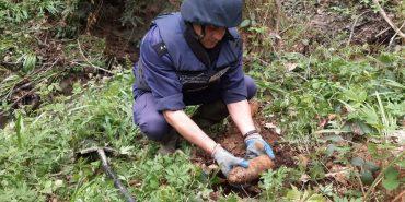 У лісі на Коломийщині знайшли сім вибухонебезпечних предметів. ФОТО